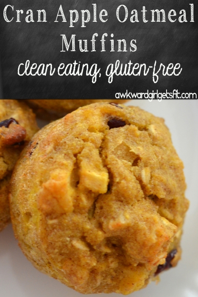 Cran Apple Oatmeal Muffins Pin